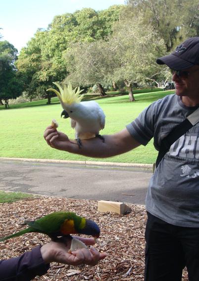 В Ботаническом саду Сиднея
